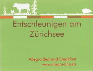 Schuseil_bb-allegra